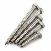 Din 571 Stainless Steel Screws