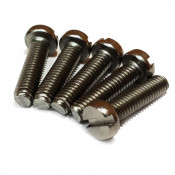 Din 84 Stainless Steel Screws